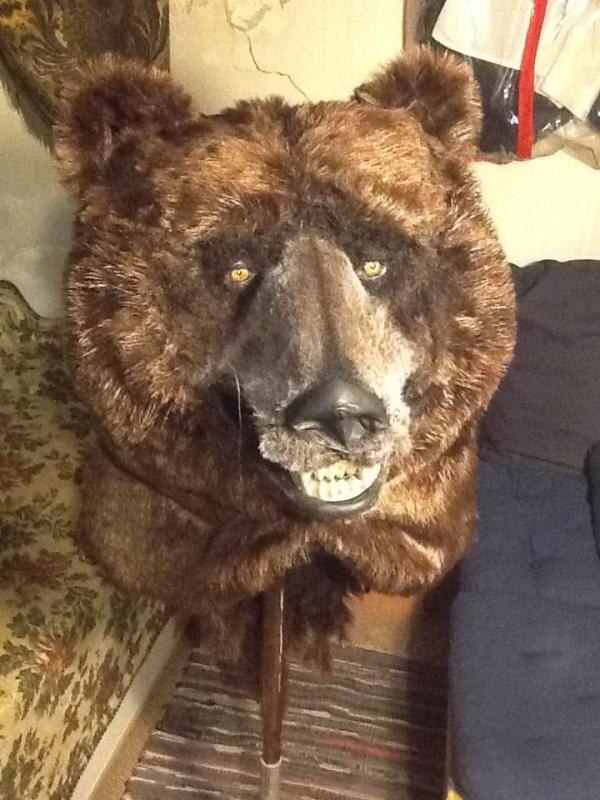 медведь3.png